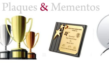 manufacturer and supplier of Trophies