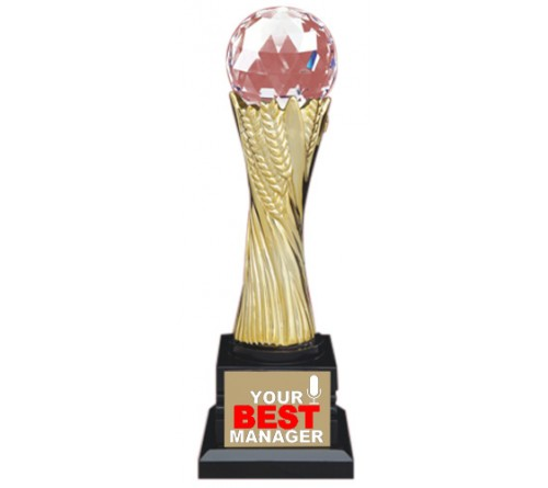 Chief Manager Trophy