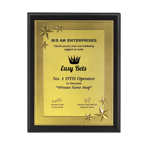 Star Wooden Plaque Trophy
