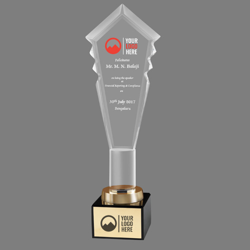 Acrylic Transparent Trophy