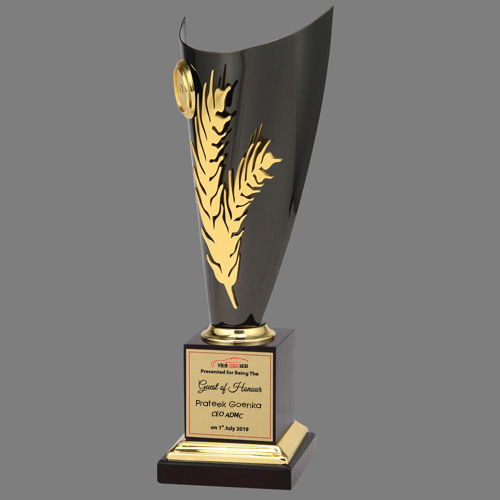 Elegant Metal Trophy